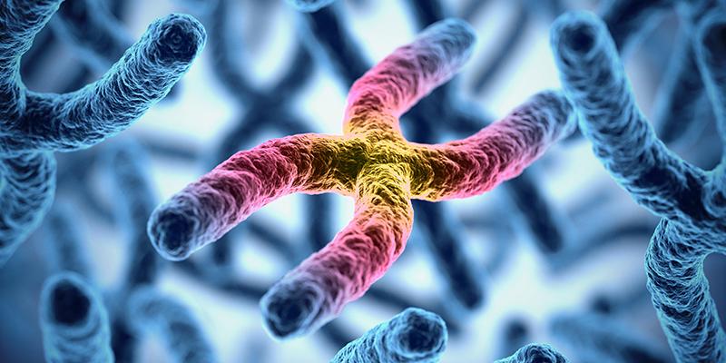 Memory Rescue Genetics