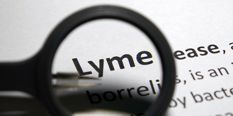 Am I Losing My Mind, Or Is It Lyme Disease?